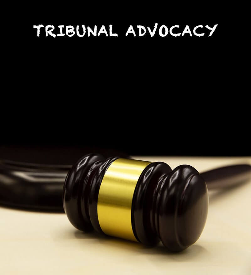 Tribunal Advocacy legal services in Toronto